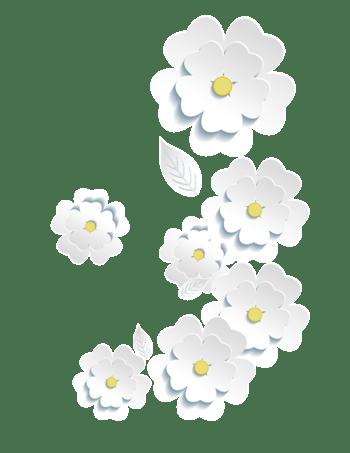唯美立体剪纸白色花朵