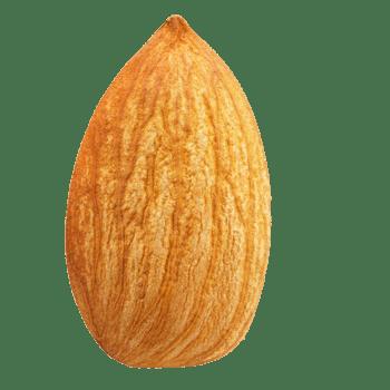 坚果巴旦木