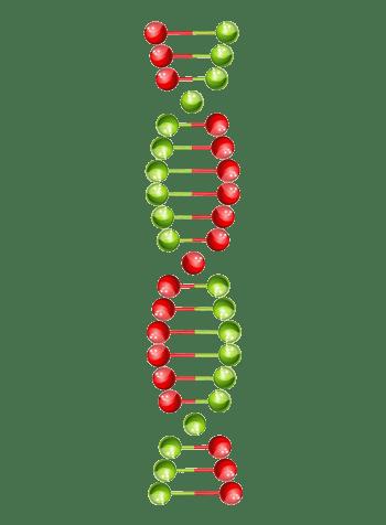 彩色DNA基因链