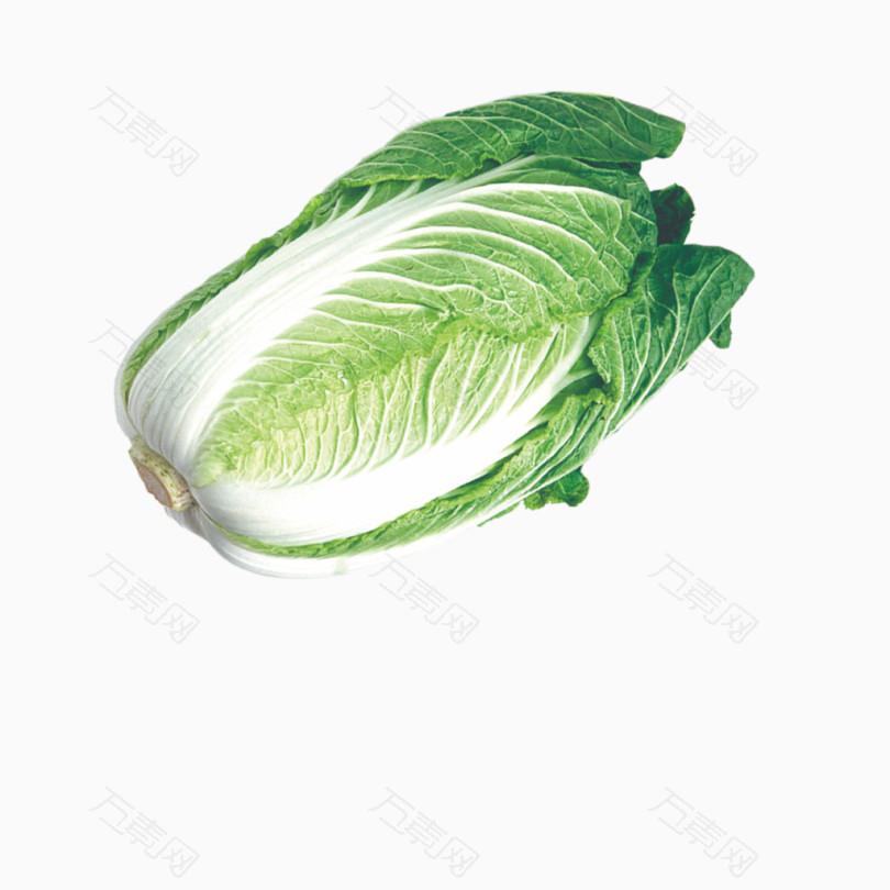 生鲜大白菜