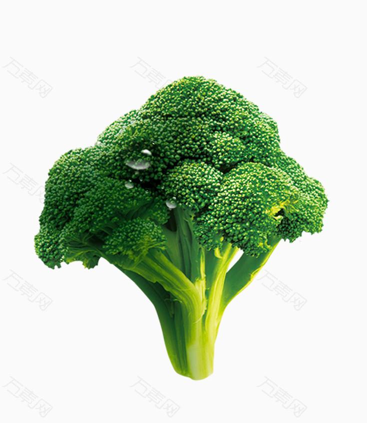 唯美清新蔬菜西兰花水滴