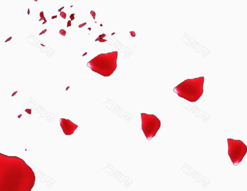 红色的玫瑰花花瓣飘落天空