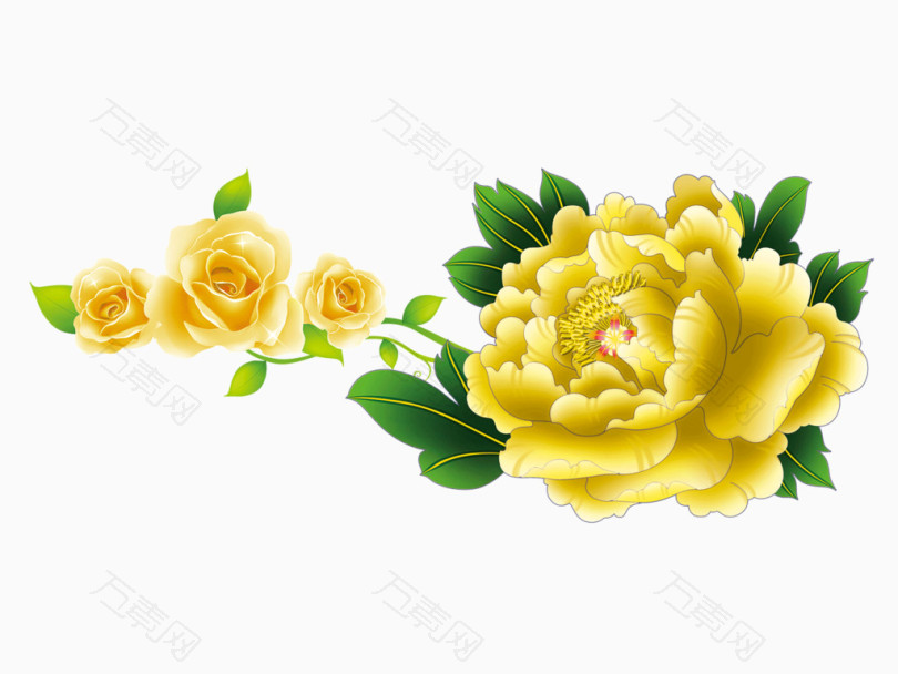 牡丹鲜花矢量图