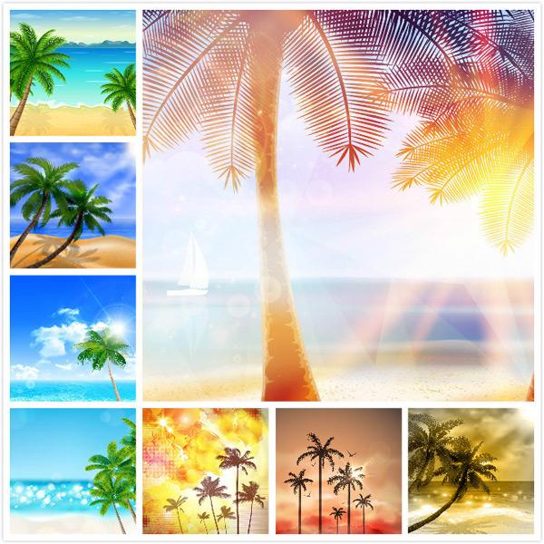 海岸椰树风光
